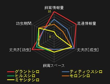 シロカブト.jpg