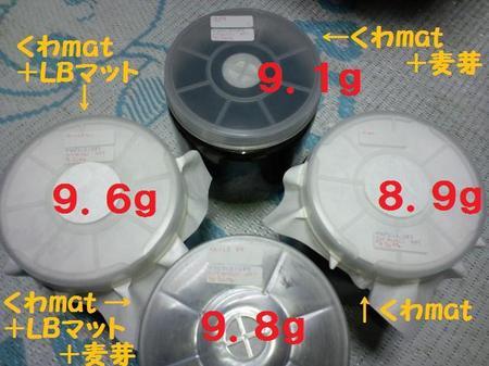 2010 03 21_0973.JPG