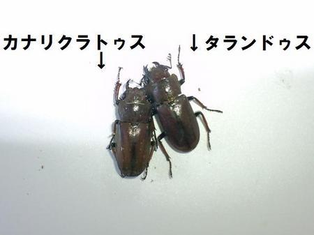 2010 09 21_1410.JPG