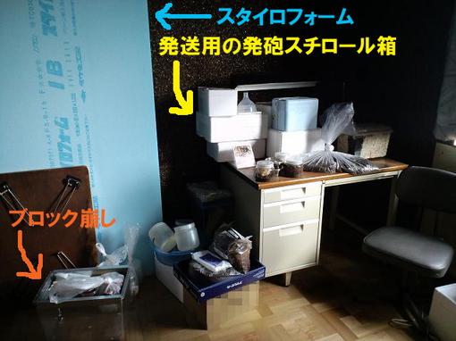 2010 11 10_1501.JPG