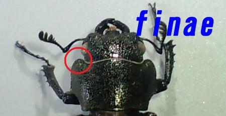 2010 12 08_1588.JPG