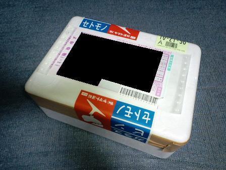 2010 12 25_1601.JPG