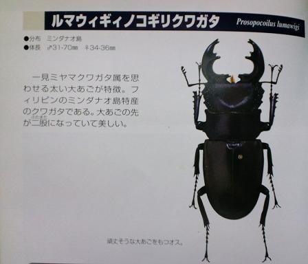 2011 05 03_1821.JPG