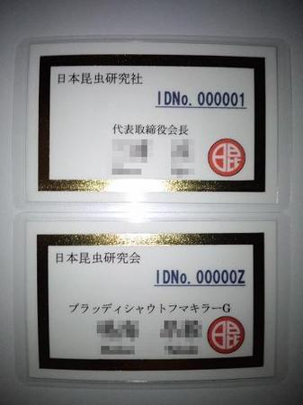 2011 08 14_1987.JPG