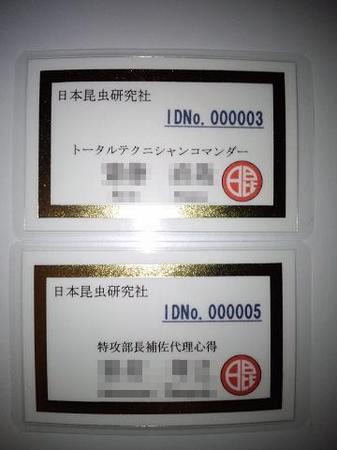 2011 08 14_1988.JPG
