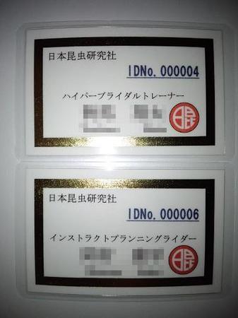 2011 08 14_1989.JPG