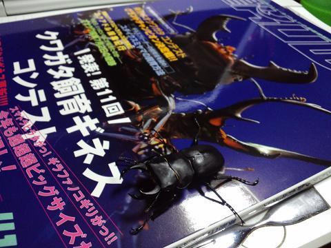 2011 10 16_2292.JPG