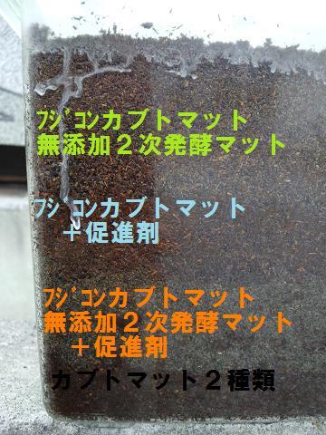 2011 09 07_2221.JPG