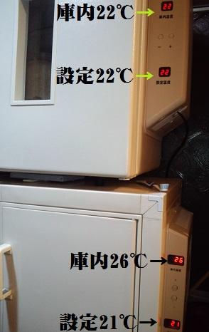 CA3I0144.JPG