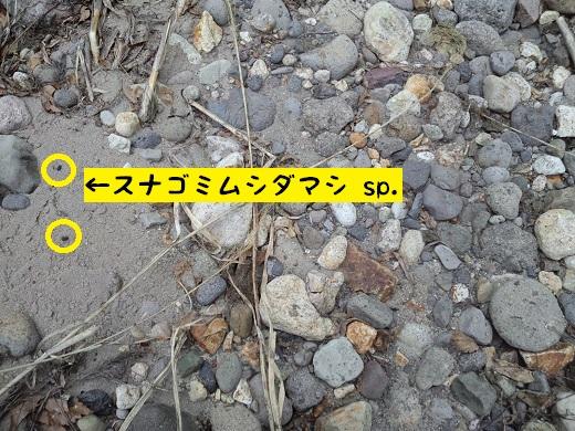 CA3I0505.JPG