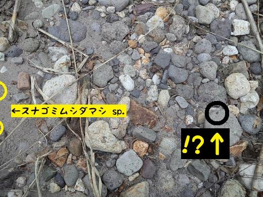 CA3I0506.JPG