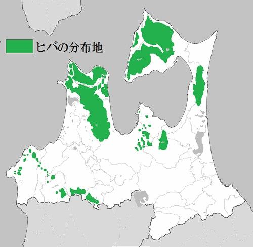 ヒバの分布.jpg