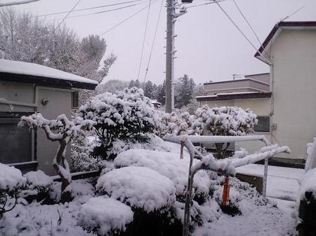 2009 11 03_0794.JPG
