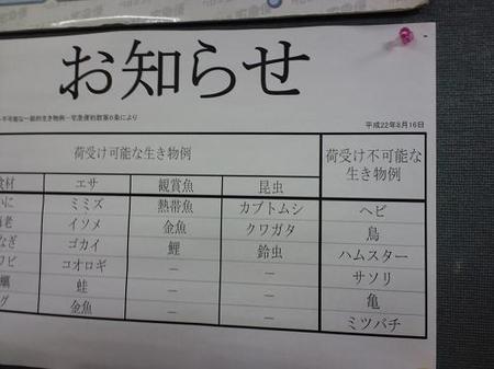 2010 11 27_1545.JPG